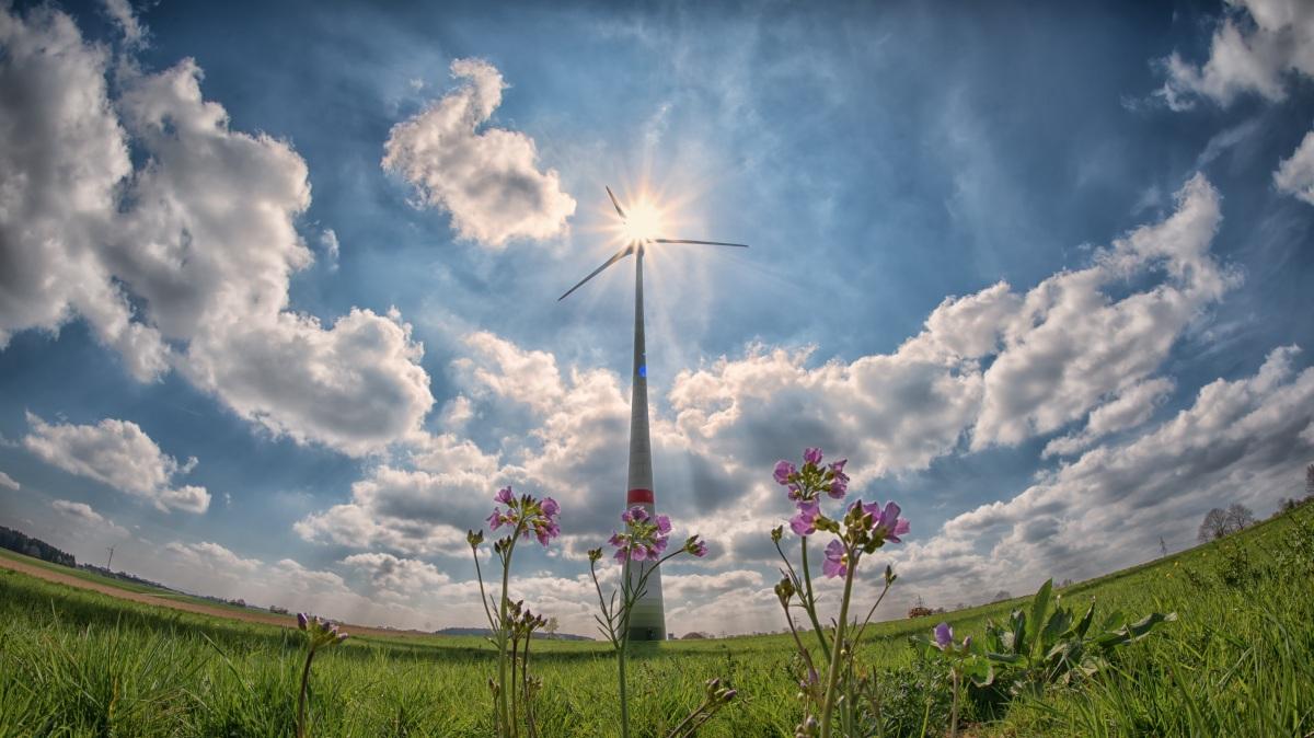 Influência das Energias Renováveis nas emissões de carbono